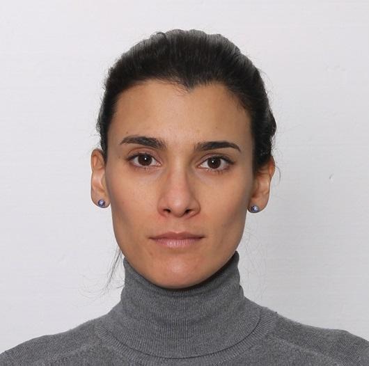 Schneider de Carvalho, E.C.  MSc