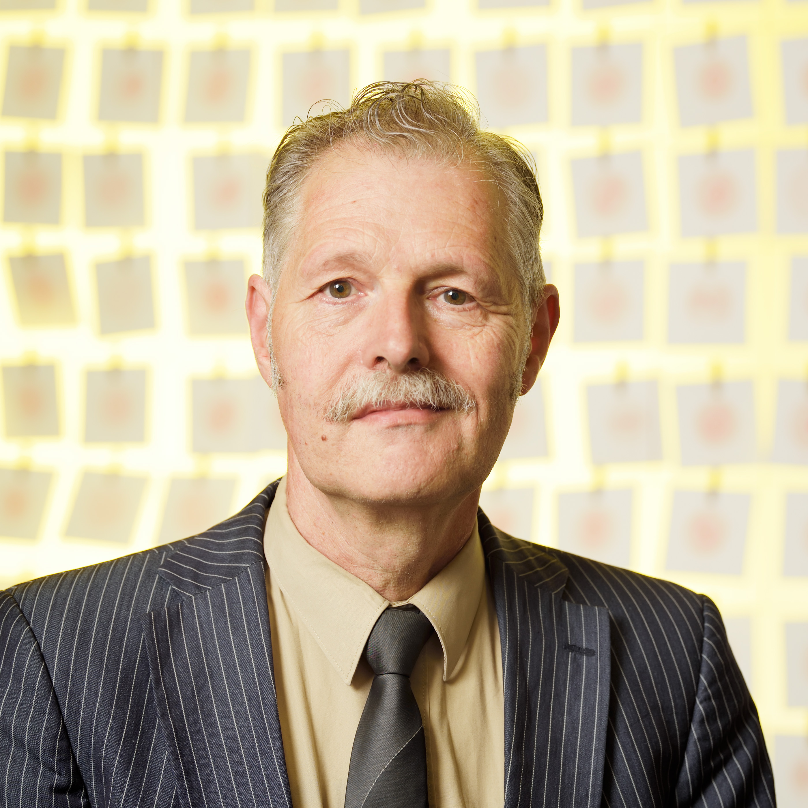 Feijs, prof.dr.ir. L.M.G.